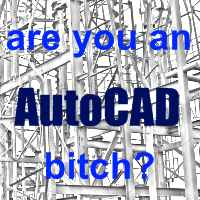 are you an autocad bitch?